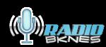 Radio online Juvenil | Radio Bknes (Reggeton online)
