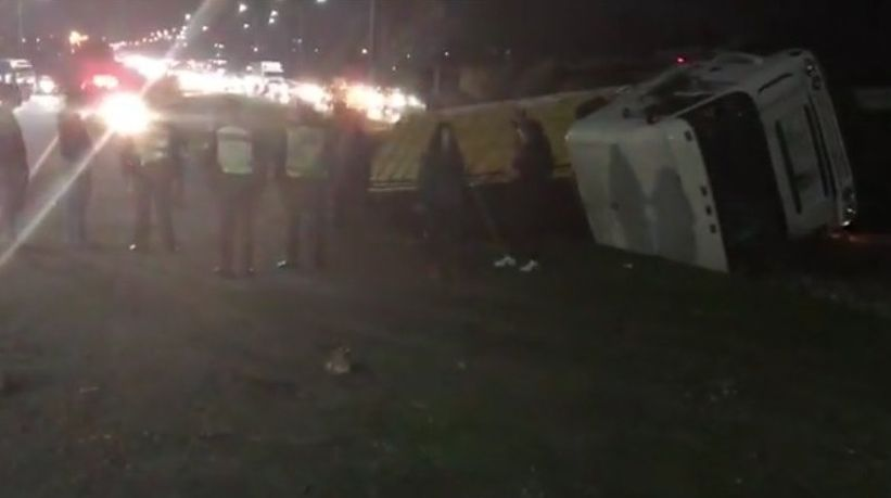 Dos camiones volcaron en Talca: uno llevaba ganado